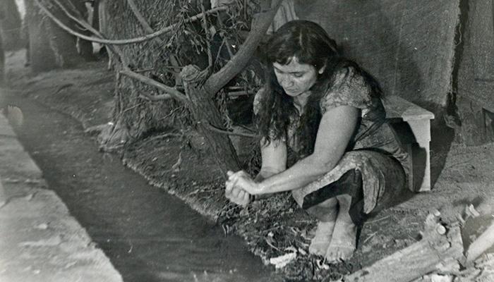 Violeta Parra en Parque Forestal
