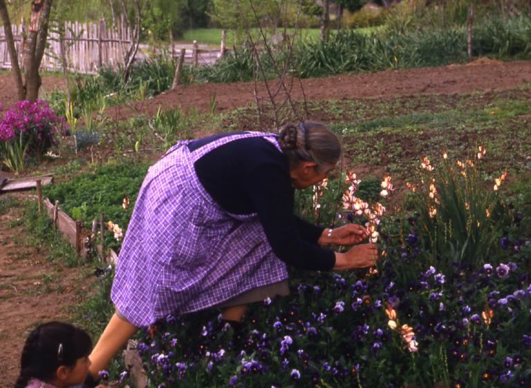 Oficios de la mujer campesina junto a Patricia Chavarría: Cuidadora de semillas y arregladora de angelito