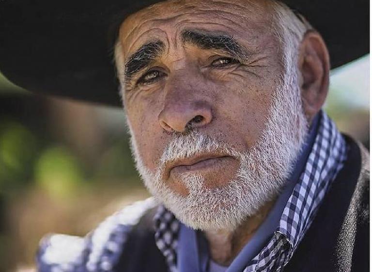 Concierto de Chincolito de Chile